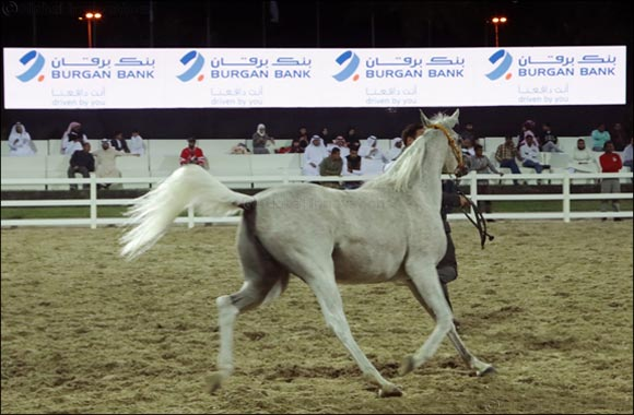 "Burgan Bank is the Diamond Sponsor of  ""Kuwait National Arabian Horse Festival 2018"""
